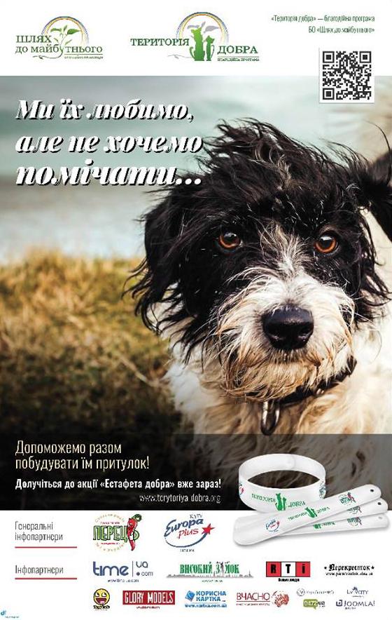 Як кіт з АТО, російські артисти та володарі браслетів рятують київських песиків - фото 1