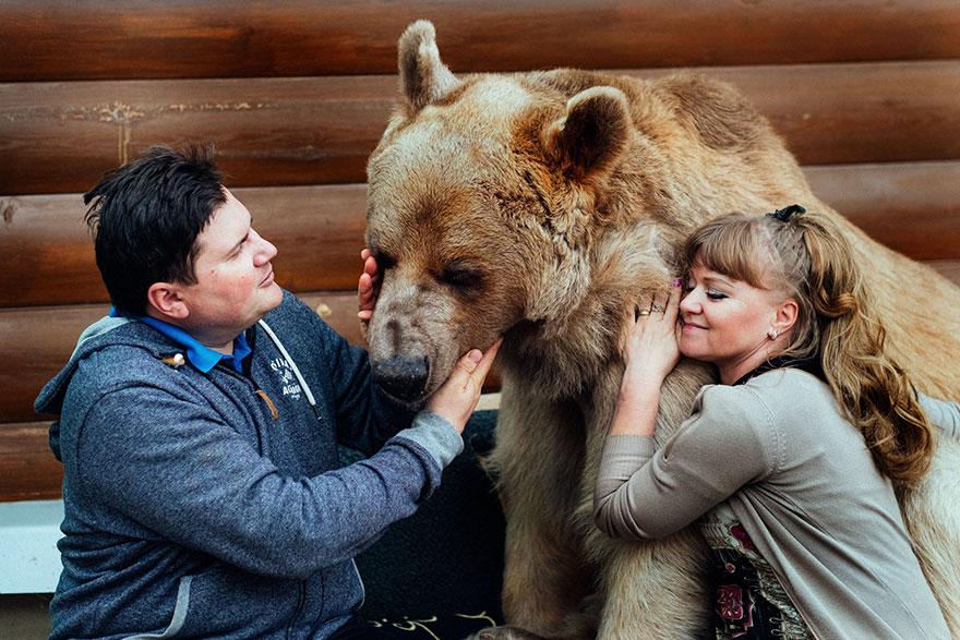 Як ведмідь розкошує в будинку у Москві - фото 2
