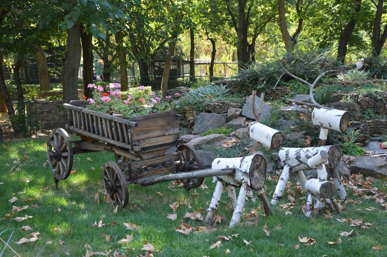 Як звірі у Миколаївському зоопарку поздоровляли городян з Днем міста - фото 15