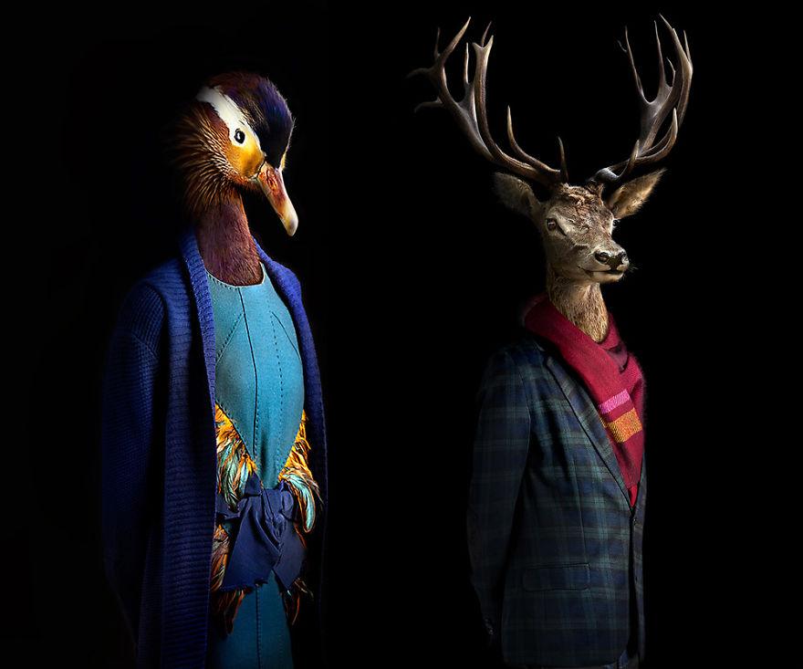Як виглядали б тварини, якщо носили б одяг  - фото 2