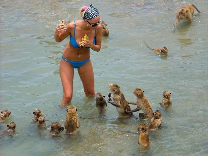 30 дивних і кумедних пляжних фотографій (Частина 2) - фото 1