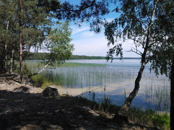 Подорожі Україною: ТОП-10 вражаючих озер - фото 5