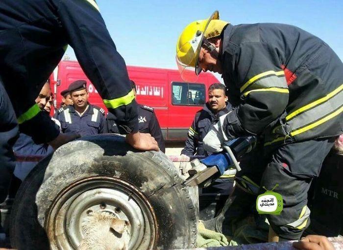 Як в Іраку рятували собаку, який застряг в колесі  - фото 3