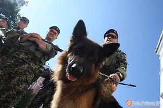 Чим займаються на Донбасі найкращі друзі бійців АТО - 6 - фото 11