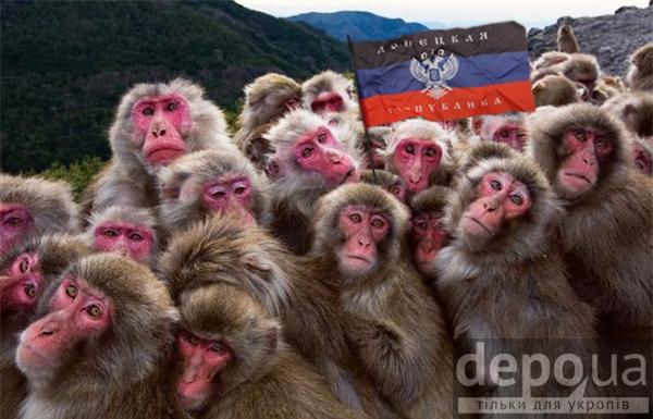 """Это же американцы. Идет обман, они лгут, - террористы """"ДНР"""" о расследовании крушения МН17 - Цензор.НЕТ 1620"""