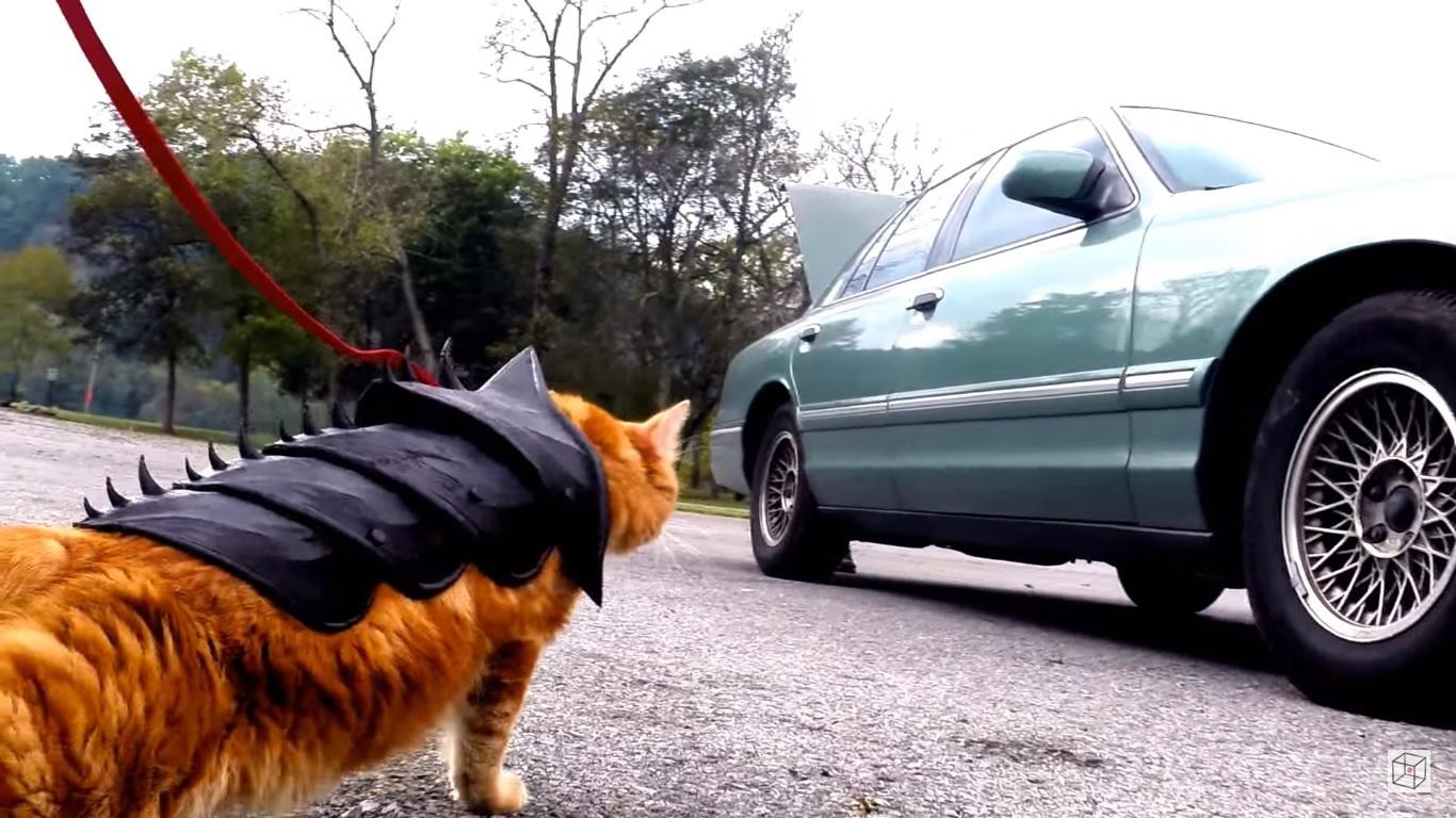 Підвіска на дупу і облизувач: ТОП-5 кумедних девайсів для котів - фото 4