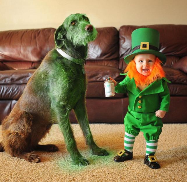 Діти-леприкони, зелений пес і смарагдова річка: ТОП-10 приколів до Дня Святого Патріка - фото 3