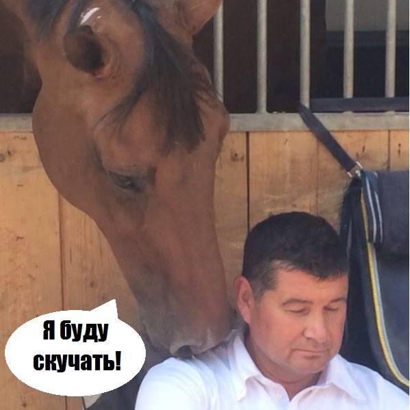 Онищенко не поїде до своїх коней у Ріо-де-Жанейро - фото 1