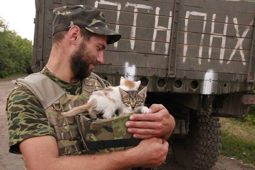 За що котам в АТО треба поставити пам'ятник-5 - фото 1