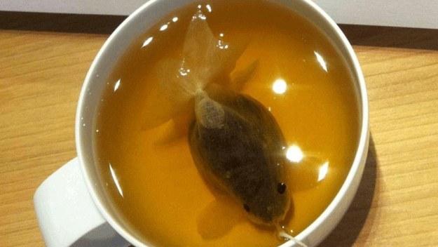 Як виглядають пакетики чаю у вигляді золотих рибок  - фото 4
