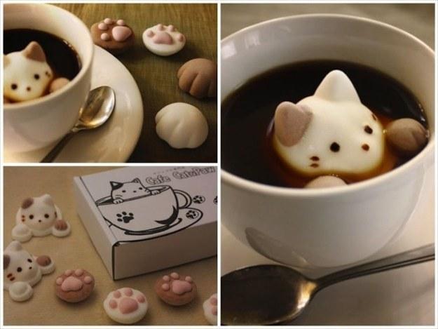 ТОП-13 геніальних кото-речей для тих, хто любить котів - фото 5