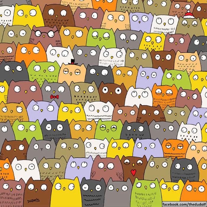 Знайди кота серед десятків милих сов  - фото 1