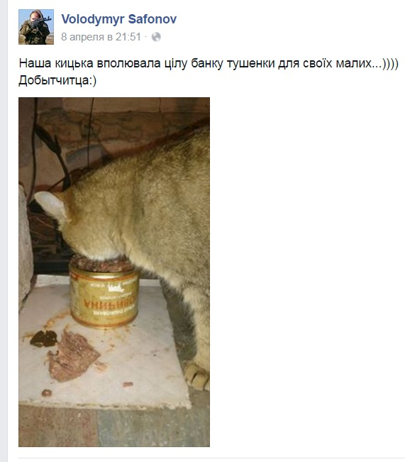За що котам в АТО треба поставити пам'ятник-5 - фото 2