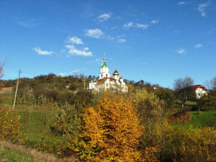 Зелені свята: Подорожуємо святими місцями Закарпаття - фото 1