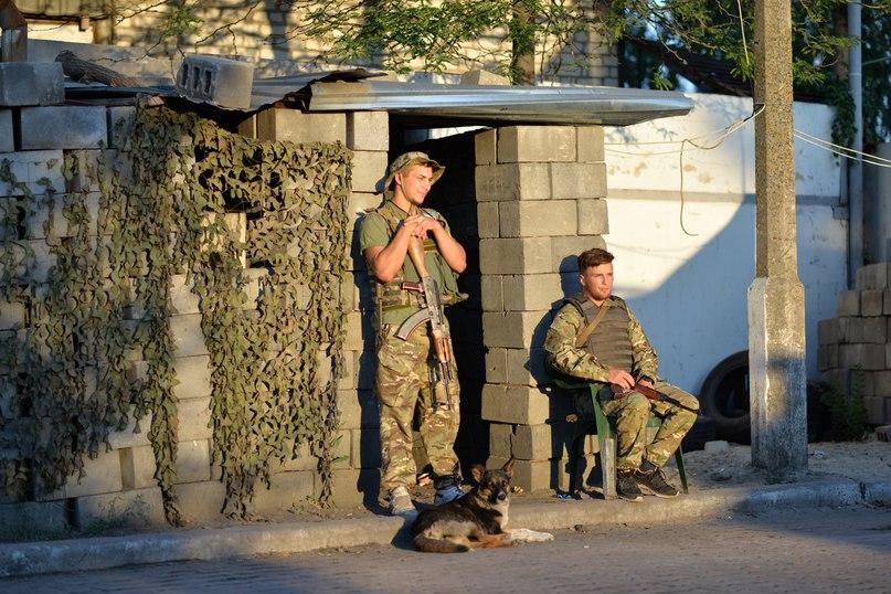 Чим займаються на Донбасі найкращі друзі бійців АТО - 2 - фото 17