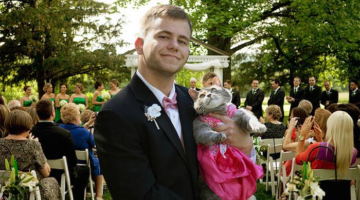 Як хлопець взяв на випускний кішку замість дівчини  - фото 1