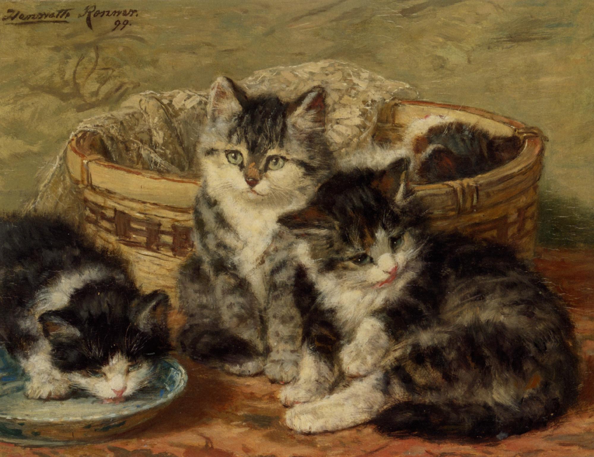 Котофілія у XIX столітті: Як раніше обожнювали котиків - фото 5