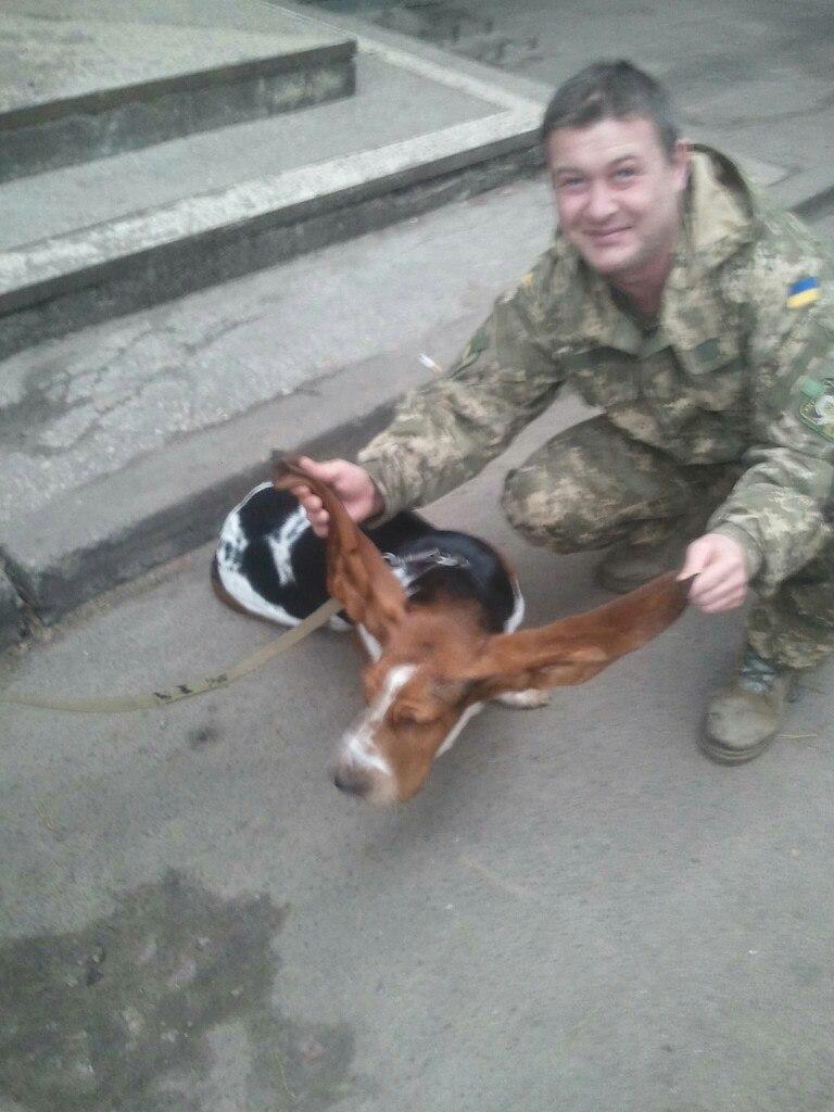 Чим займаються на Донбасі найкращі друзі бійців АТО - 6 - фото 12