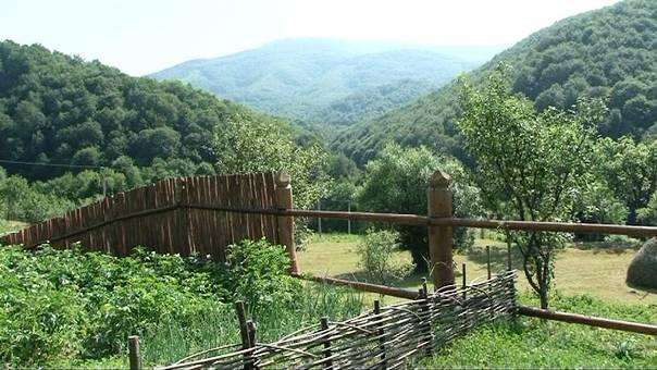 У маленькому закарпатському селі Лікіцари усього 14 жителів