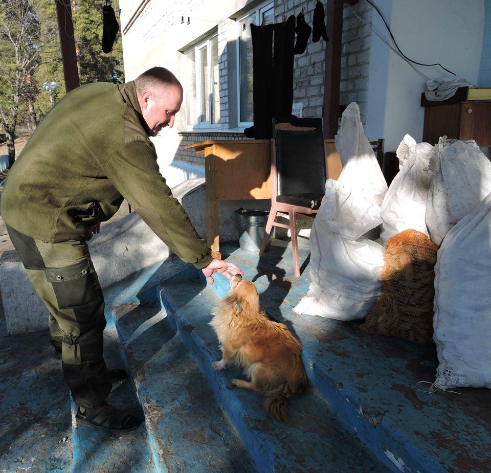 Чим займаються на Донбасі найкращі друзі бійців АТО - 2 - фото 14