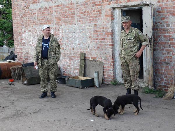 Чим займаються на Донбасі найкращі друзі бійців АТО-4 - фото 9