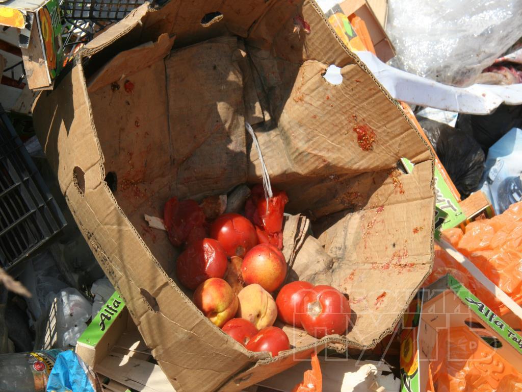 Росіяни шукають серед сміття недочавлені санкційні продукти  - фото 1