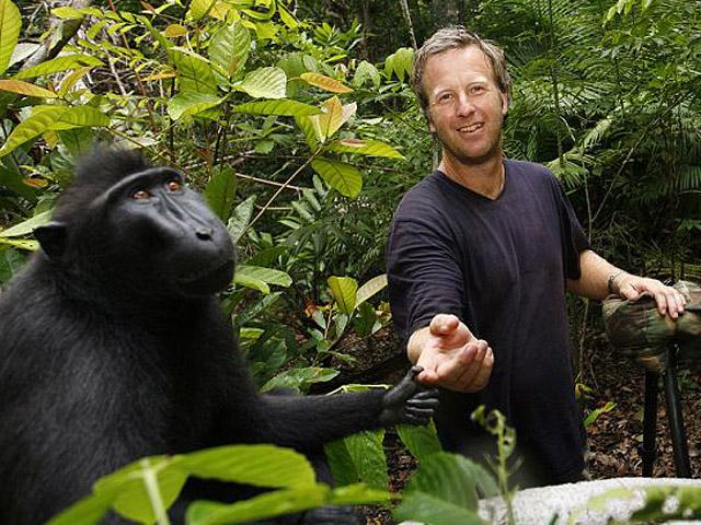 Символи-2016: найвідоміші та найприкольніші мавпи у світі - фото 2