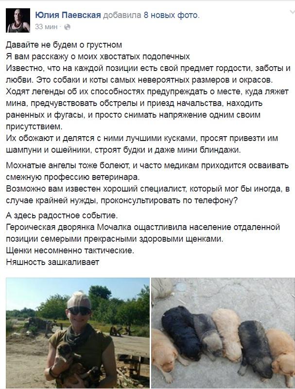 Чим займаються на Донбасі найкращі друзі бійців АТО-5 - фото 7