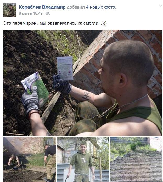 """Як """"колоради"""" знищують картоплю бійців АТО - фото 3"""