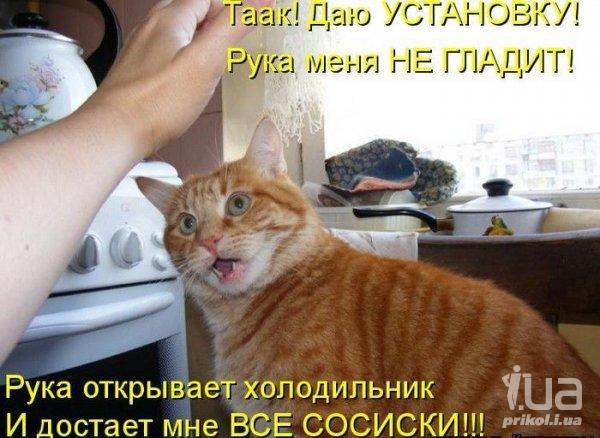 Путін-гіпнотизер і : ТОП-8 приколів про Кашпіровського - фото 2