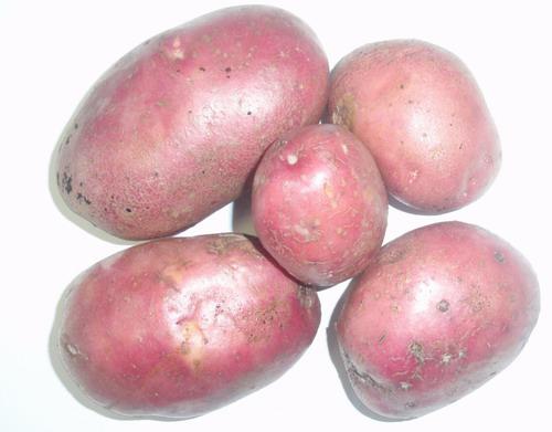 ТОП-10 країн, які найбільше наминають картоплю - фото 2