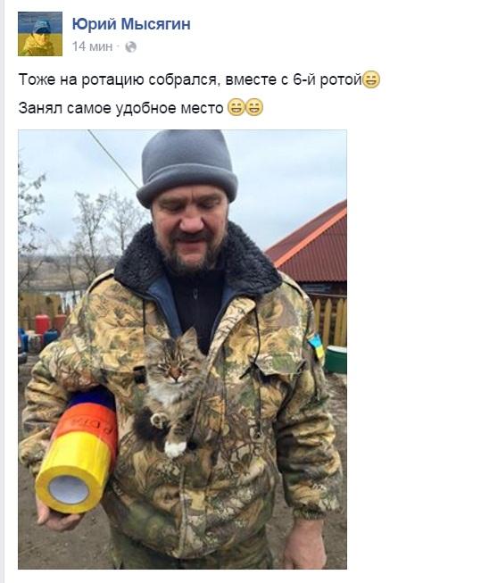 Як пухнастий Донбас розселяється Україною - фото 7