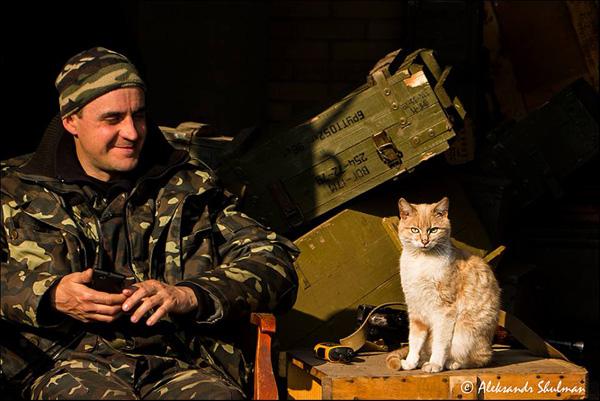 За що котам в АТО треба поставити пам'ятник-6 - фото 4