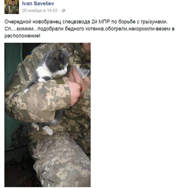 Як пухнастий Донбас розселяється Україною - фото 3