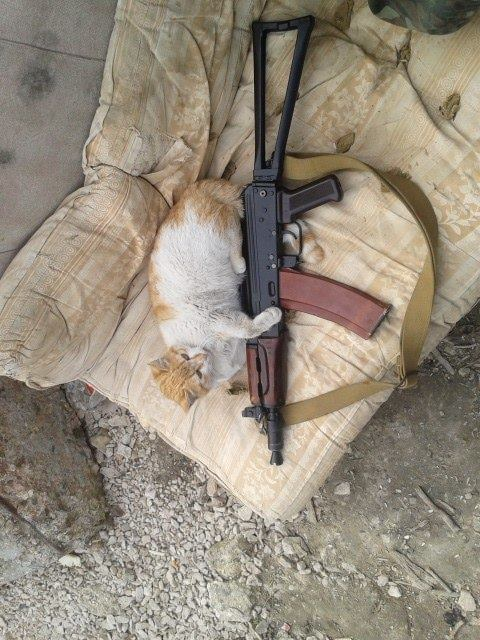 Мімішні бійці: Коти-кулеметники в АТО - фото 6