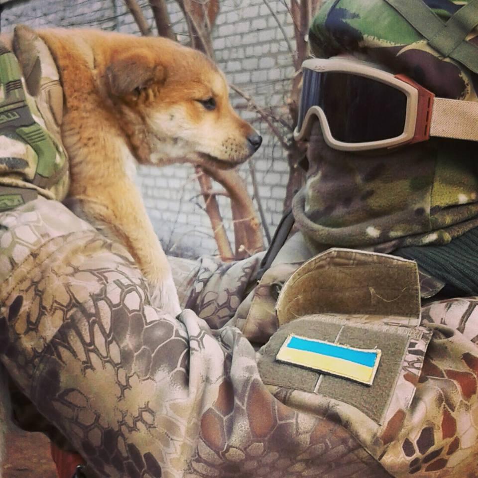 Чим займаються на Донбасі найкращі друзі бійців АТО - 2 - фото 12