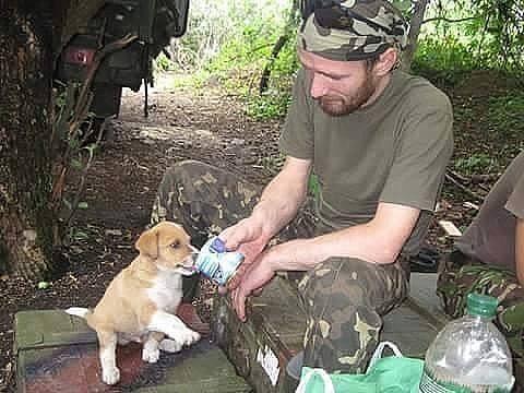 Чим займаються на Донбасі найкращі друзі бійців АТО - 2 - фото 11
