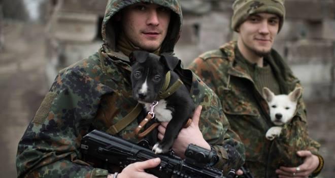 Чим займаються на Донбасі найкращі друзі бійців АТО - фото 9