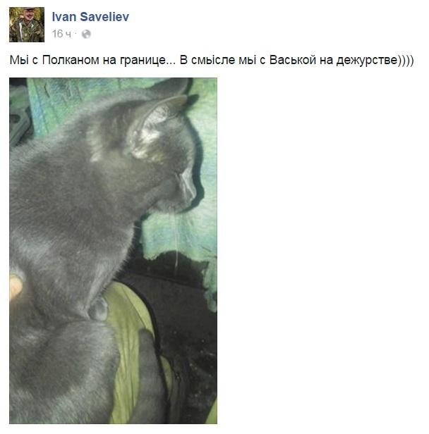 За що котам в АТО треба поставити пам'ятник-2 - фото 9