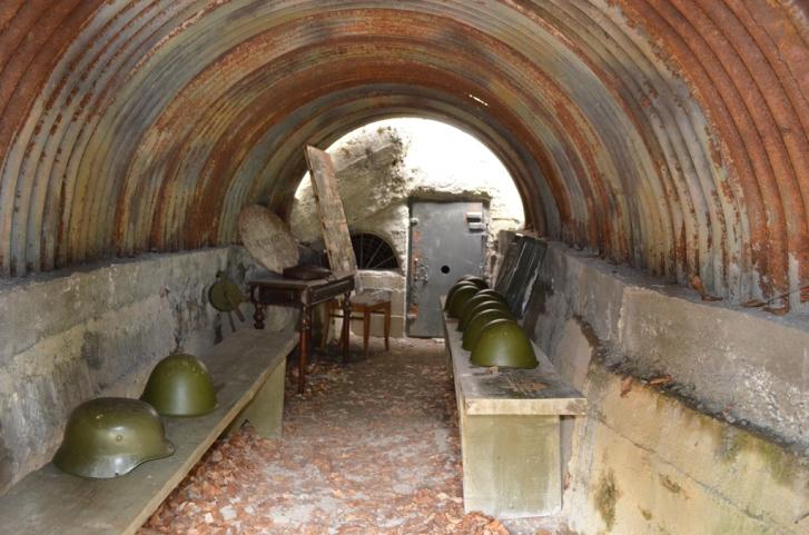 Як завзяті закарпатці в одному селі 10 музеїв та 20 пам'ятників відкрили - фото 14