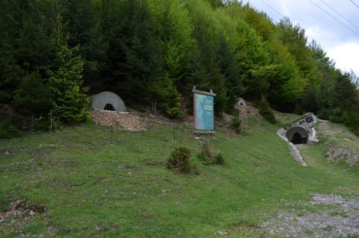 Як завзяті закарпатці в одному селі 10 музеїв та 20 пам'ятників відкрили - фото 12