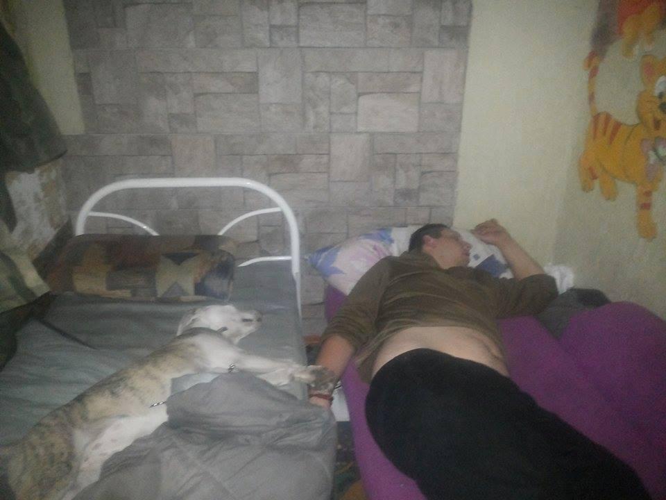 Чим займаються на Донбасі найкращі друзі бійців АТО - фото 3