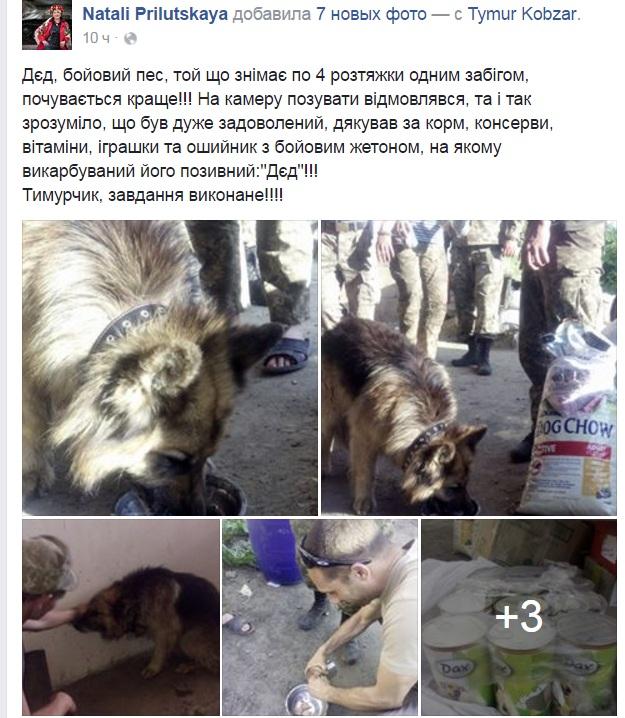 Чим займаються на Донбасі найкращі друзі бійців АТО-4 - фото 6