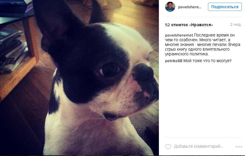 Російські демони і нещирий Кличко: ТОП-10 постів Шеремета у соцмережах - фото 9