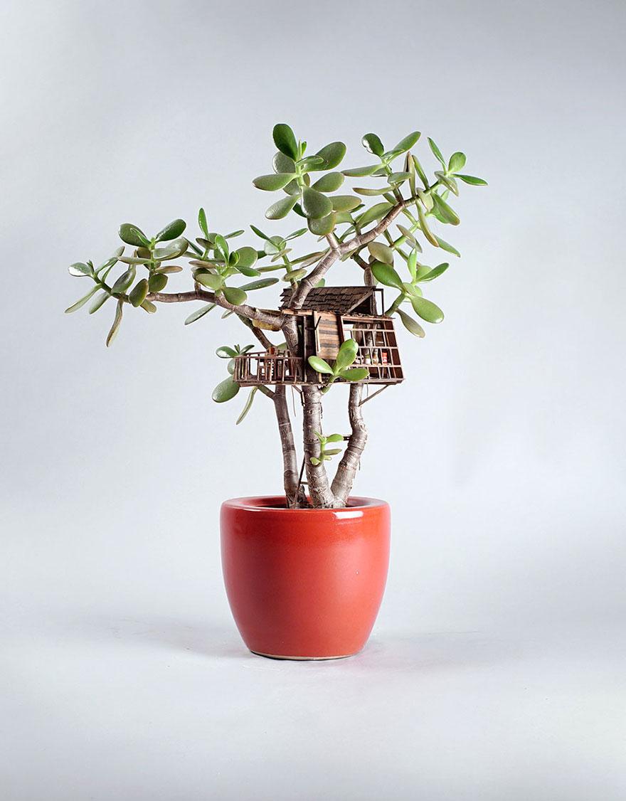 Як виглядають мініатюрні будиночки на кімнатних рослинах - фото 3