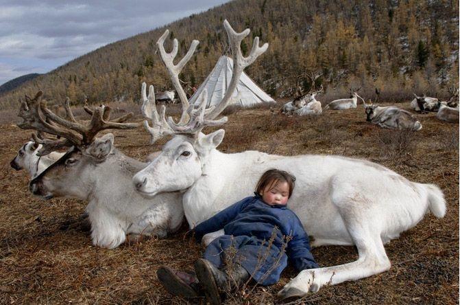 Як неймовірно виглядає життя монгольського загубленого племені  - фото 7