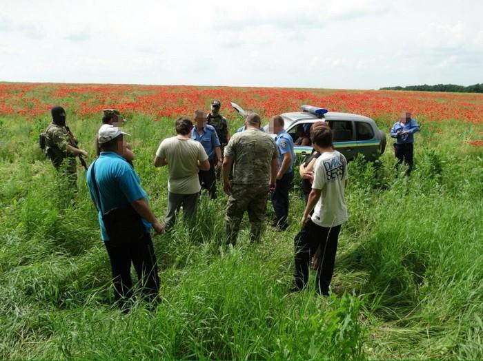 На Харківщині знайшли величезні макові плантації, з яких планували виготовити наркотики - фото 1
