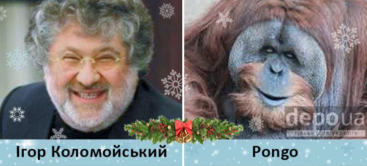 Політики та мавпи - фото 10