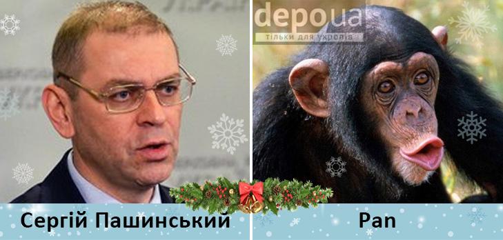 Політики та мавпи - фото 9