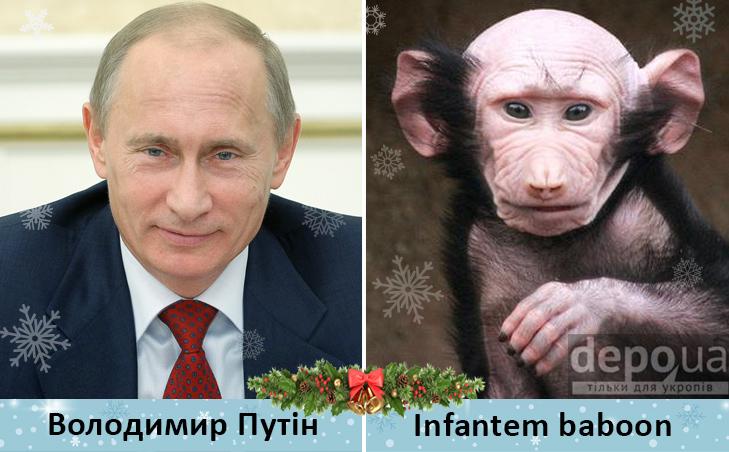 Політики та мавпи - фото 12